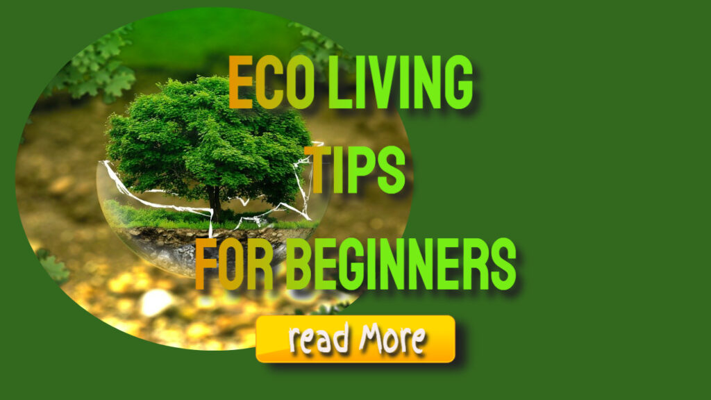 eco living tips for beginners