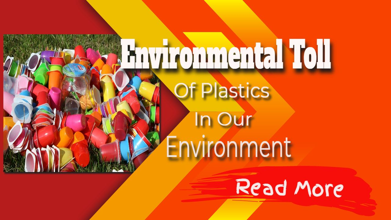 environmental toll of plastics in our environment